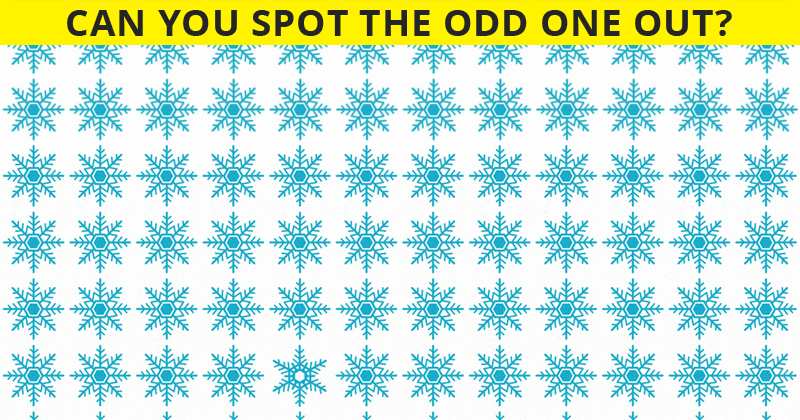 This Puzzle Is Driving The Internet Crazy. Can You Spot The Odd One Out Immediately?