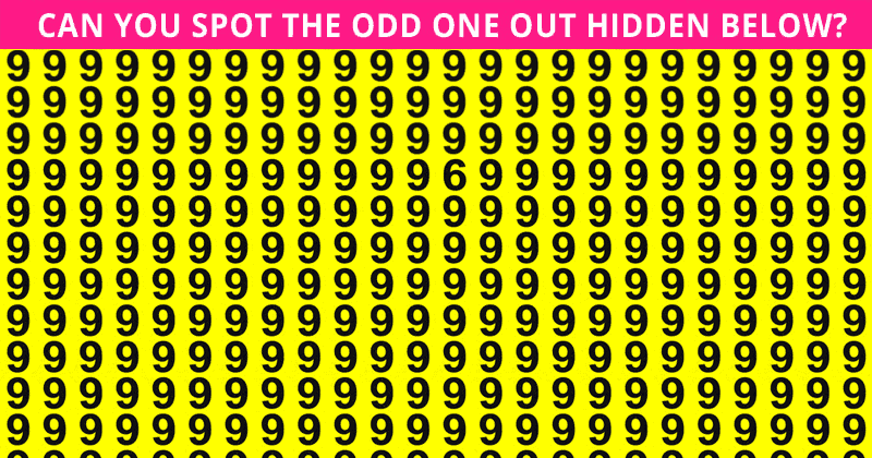 Only 1 In 50 People Can Beat This Odd One Out Quiz. Are You Up To The Task?