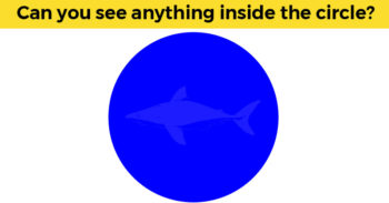 Can You Pass This Incredibly Difficult Visual Test?