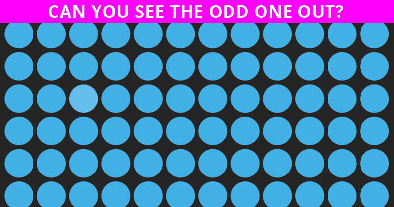 How Fast Can You Find The Odd One In This Picture?