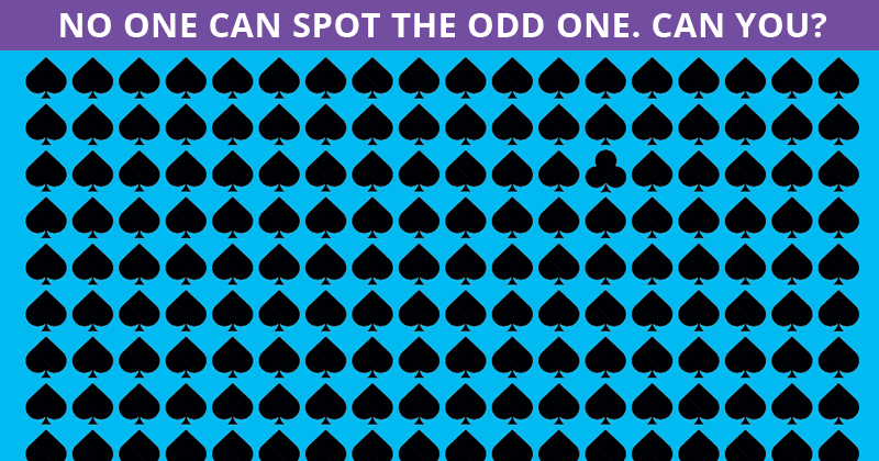 Almost No One Can Beat This Odd One Out Visual Puzzle. Are You Up To The Task?