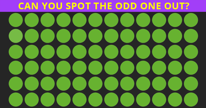 Can You Identify The Odd Ones Out In This Very Difficult Visual Test?