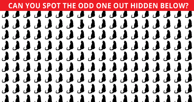 How Quickly Can You Complete This Odd One Out Visual Challenge? Not Many Can Do It In Under 60 Seconds