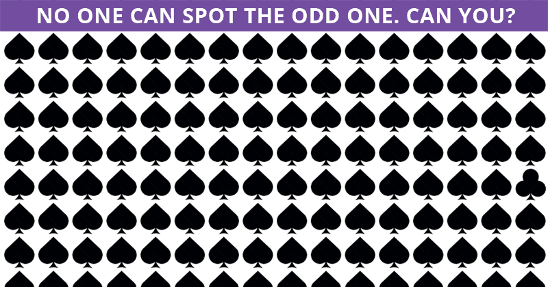 Only 5 Out Of 100 People Will Graduate From This Odd One Out Quiz!