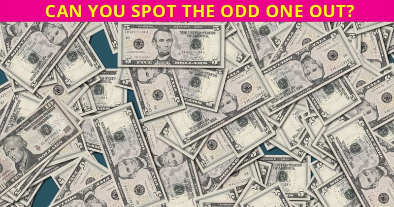 Almost No One Can Achieve 100% In This Odd One Out Puzzle. Prove Us Wrong!