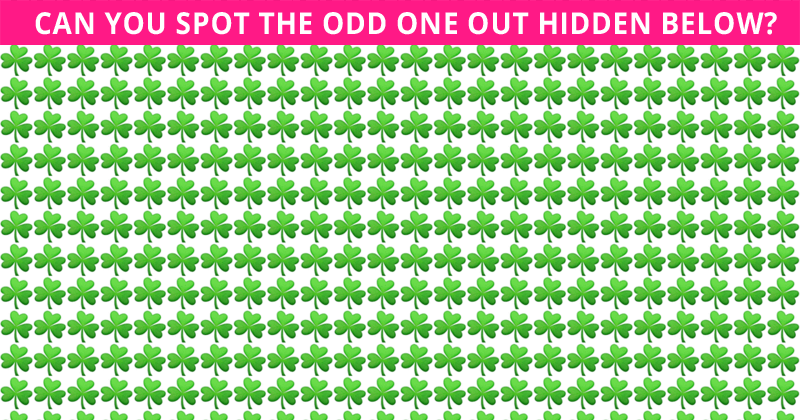 Only 1 In 35 People Can Achieve 100% In This Odd One Out Test. Are You Up To The Challenge?