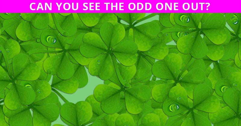 This Viral Test Will Determine Your Visual Perception Talents In Less Than One Minute