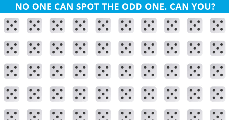 Only 5 Out Of 100 People Will Graduate From This Tricky Odd One Out Visual Test!