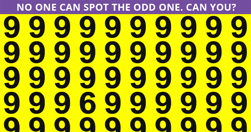 Only People With An Unusually High IQ Will Be Able To Ace This Odd One Out Visual Challenge! How About You?
