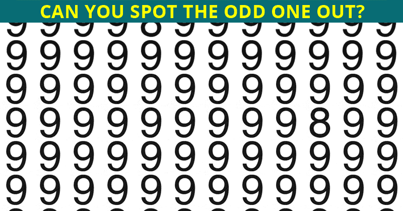 Only 1 In 35 People Can Beat This Odd One Out Quiz. Are You Up To The Challenge?