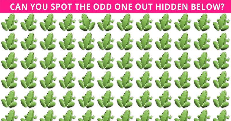 Almost No One Can Ace This Odd One Out Visual Puzzle. Are You Up To The Challenge?