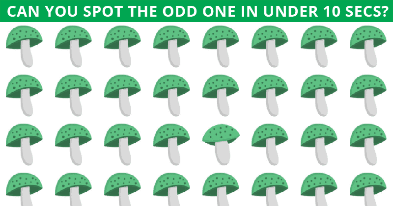 Almost No One Can Achieve 100% In This Odd One Out Visual Game. Are You Up To The Challenge?