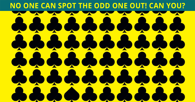 Only 4% Of People Can Achieve 100% In This Odd One Out Quiz. Are You Up To The Challenge?