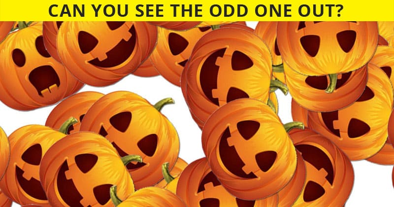 This Odd One Out Quiz Will Determine The Sharpness Of Your Eyesight In Less Than One Minute