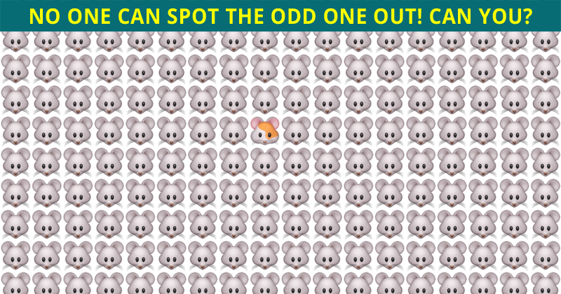Fun Odd One Out Test To Check Your Focusing Abilities Only 1 Person Out Of 10 Can Do It. How About You?