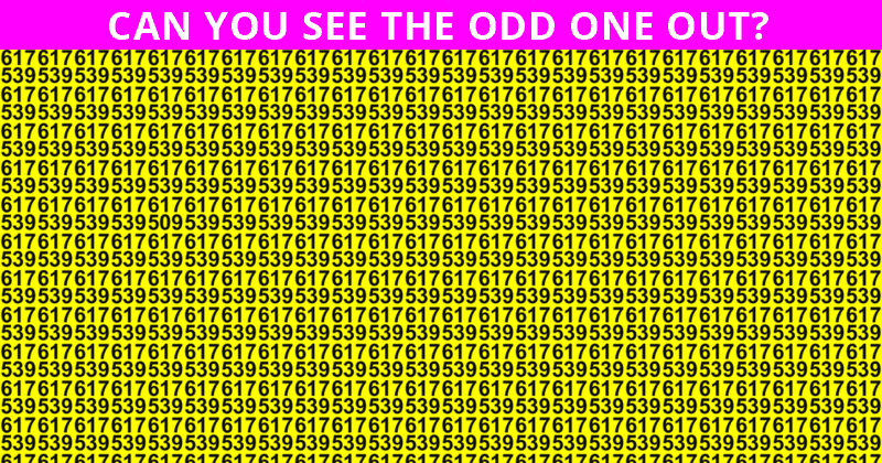 Only 1 In 30 Sharp-Eyed People Can Achieve 100% In This Challenging Odd One Out Quiz. How About You?