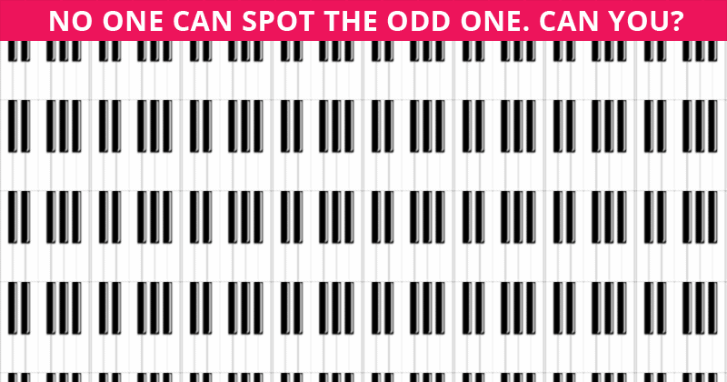 Challenge Time: Nobody Can Solve This Crazy Tough Test. Can You Spot The Odd One Out On All Levels In Less Than 10 Seconds?