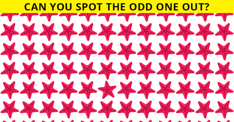 Only 1 In 30 Sharp-Eyed People Can Achieve 100% In This Challenging Odd One Out Visual Challenge. How About You?