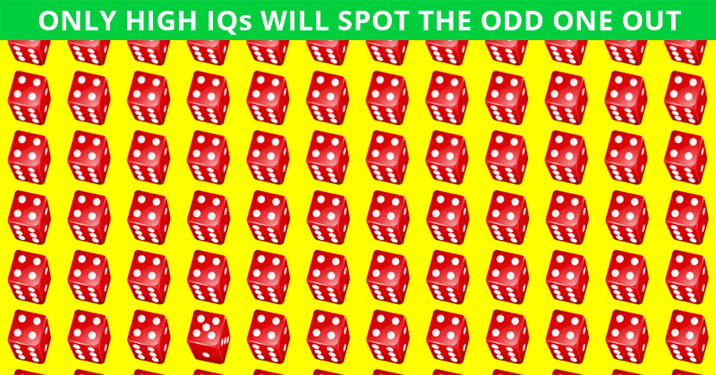 Only 1 In 35 People Can Ace This Odd One Out Test. Are You Up To The Challenge?