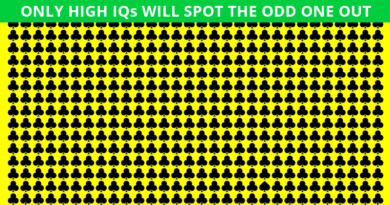 Only 4% Of People Can Beat This Tough Odd One Out Quiz. How About You?