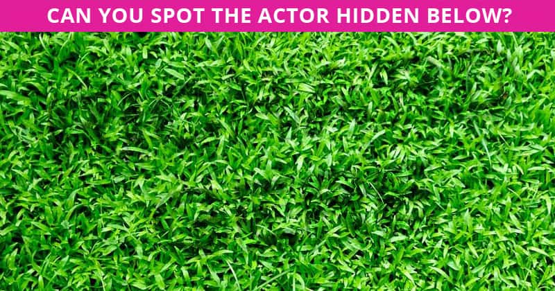 Is Your IQ Is High Enough To Pass This Hidden Actor Challenge?