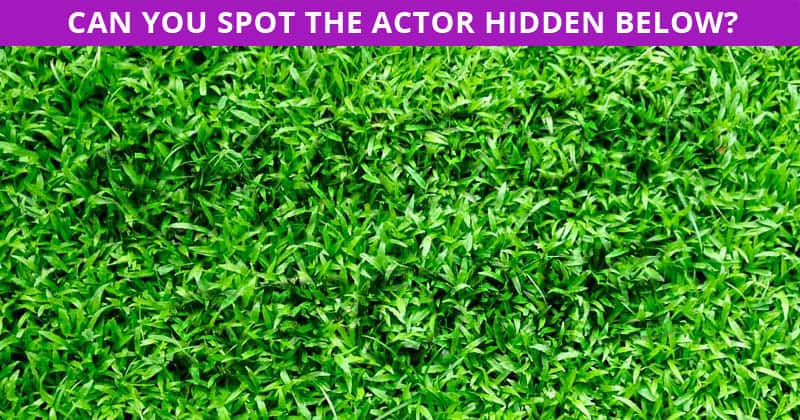 Can You Pass This Incredibly Difficult Hidden Actor Visual Test?