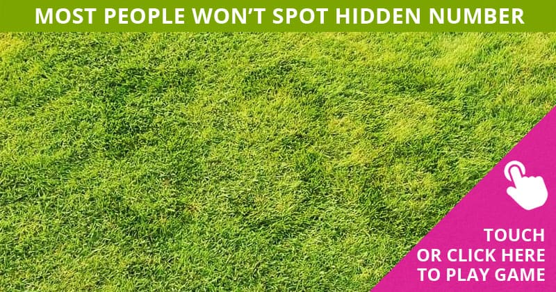 Challenge Time: No One Can Solve This Crazy Tough Test. Can You Spot The Hidden Number Immediately?
