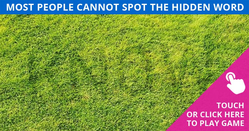 This Hidden Word Test Will Determine Your Visual Perception Talents In Less Than 60 Seconds