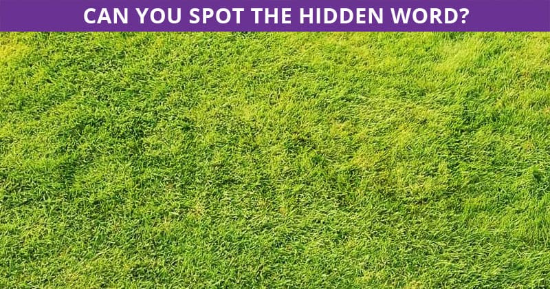 This Hidden Word Game Will Determine The Sharpness Of Your Eyesight!
