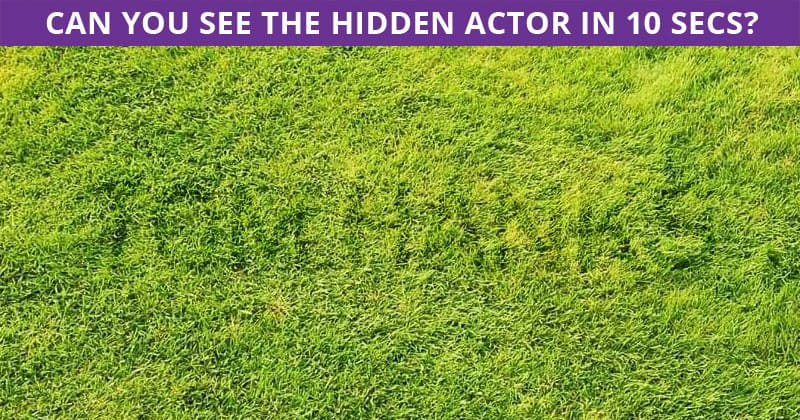 Nobody Can Solve This One. Can You Spot The Hidden Actor Immediately?