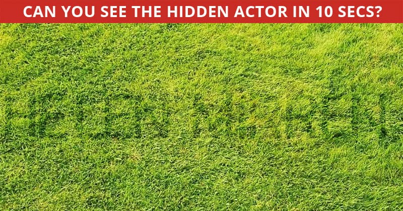 Almost No One Can Achieve 100% In This Challenging Hidden Actor Visual Puzzle. How About You?