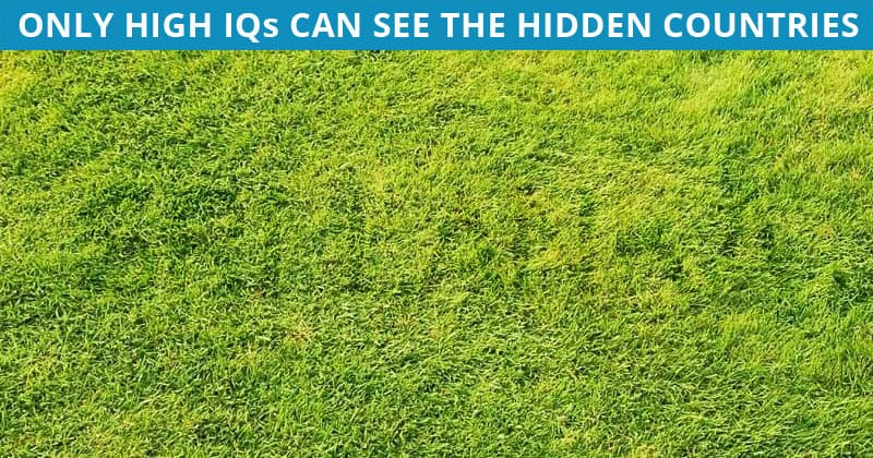 Only 7% Of People Can Achieve 100% In This Hidden Country Visual Task. Are You Up To The Task?