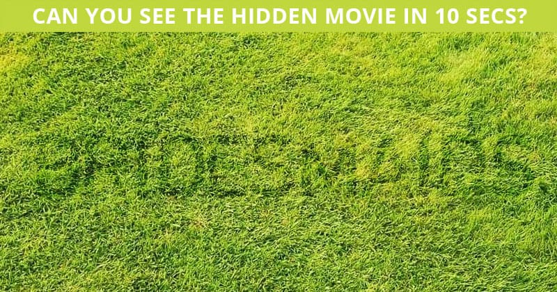 How Quickly Can You Find The Hidden Movie In This Tough Test?