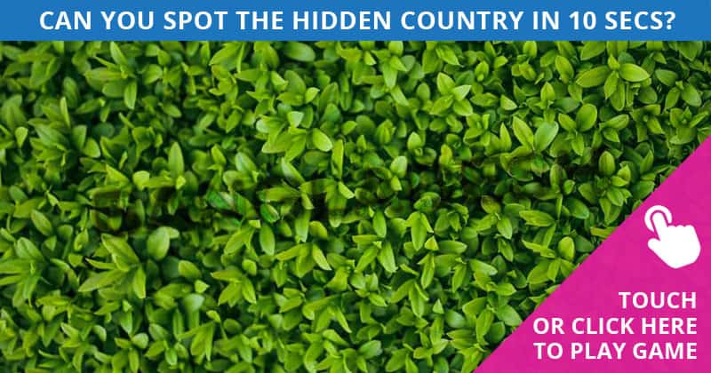 Only 5 Out Of 100 People Will Graduate From This Hidden Country Visual Test! Will You?