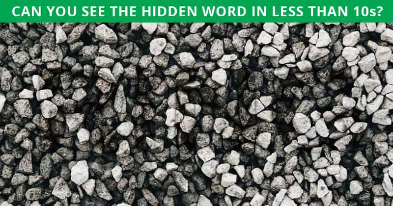 Only 1 In 15 People Can Ace This Challenging Hidden Word Visual Puzzle
