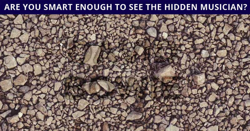 This Hidden Rock Stars Game Will Determine Your Visual Perception Talents In 60 Seconds