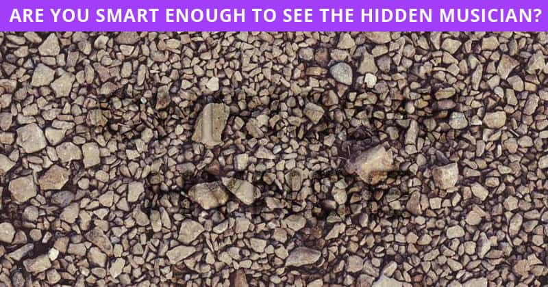 You Will Never Score More Than 50% In This Tricky Hidden Rock Stars Puzzle