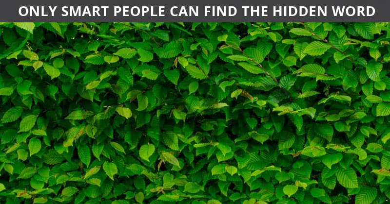 Only 1 In 30 Sharp-Eyed People Can Ace This Difficult Hidden Word Visual Game. How About You?