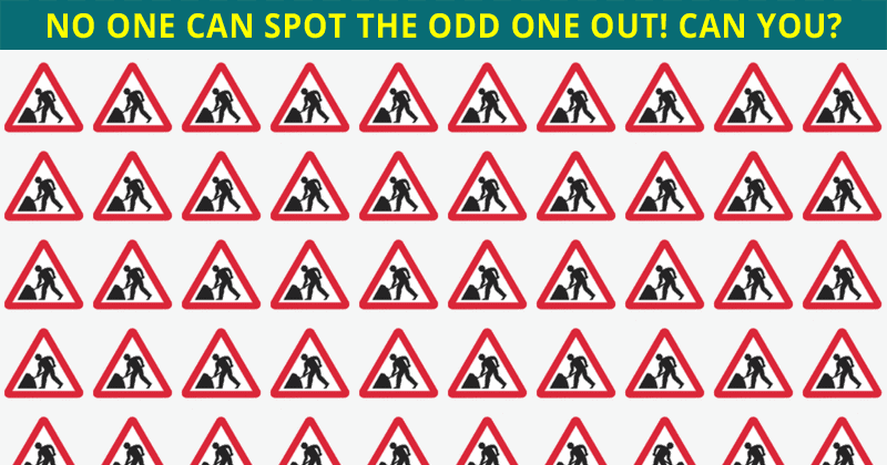 If You Can See The Odd One Out Within 12 Seconds, You Have An Extremely Sharp Mind
