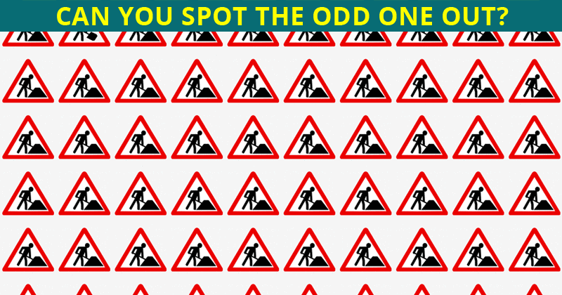 Only 4 Out Of 100 People Will Graduate From This Odd One Out Quiz!
